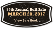 2016 Bull Sale